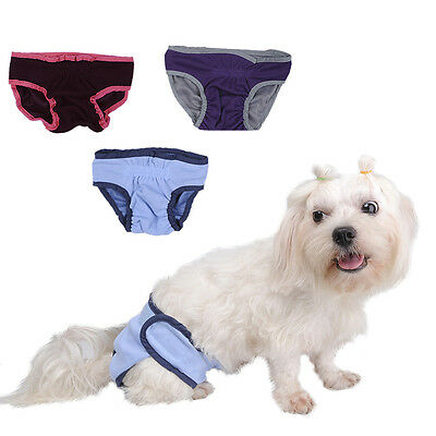 Adjustable Physiological Cotton Pant Puppy Supply Diaper Clean Pet Dog Health