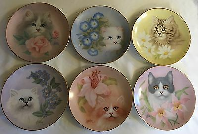 The Hamilton Collection Plate - Petals And Purrs Collection - 1988 Set Of 6