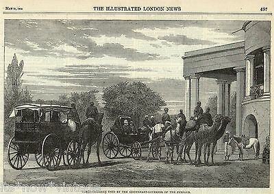 Illustrated London News, India, Camel Carriage,the Punjab 1864