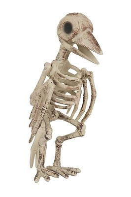 Scary Skeleton BIRD 30 cm Tall Crow Halloween Party Decoration Prop Fancy Dress