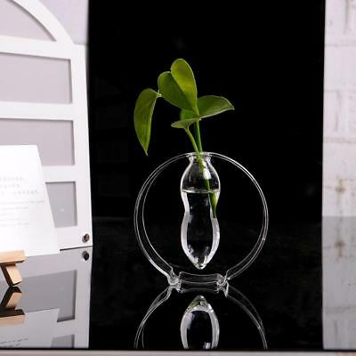 Creative Glass Flower Planter Garden Vase Bottle Hydroponic Terrarium Pot