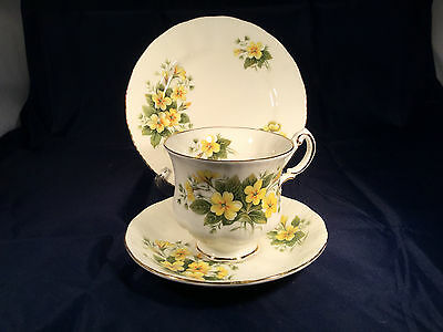 Pretty Paragon  Vintage China Trio Cup, Saucer & Plate  Primrose