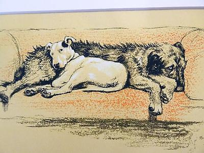 Cecil Aldin Micky & Cracker Wolfhound Bull Terrier Probation Matted Print