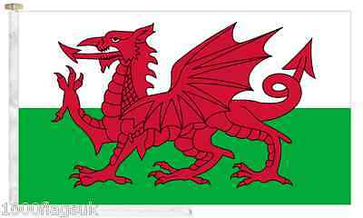 Wales Roped & Toggled 5' x 3' Boat Flag