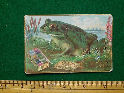1870s-80s J P Coates Six Cord Giant Toad Thread Numbers Victorian Trade Card F17