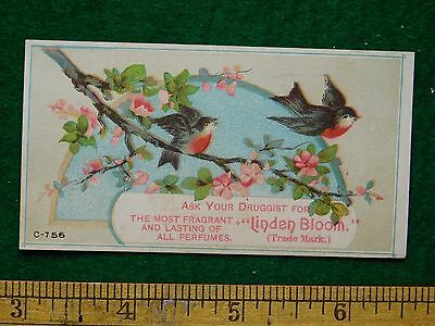 1870s-80s Linden Bloom Druggist Perfume Birds on Branch Victorian Trade Card F17