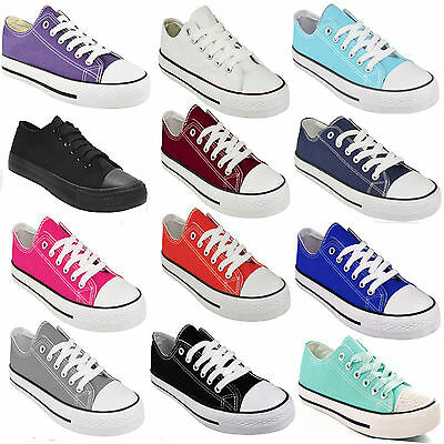 8c8d48dee Ladies Womens Flat Girls Plimsolls Pumps Trainer Lace Up Canvas Shoes  Trainers