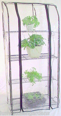 NEW Black Green house Hothouse Rack with FREE Bonus Garden Pack balcony seeds