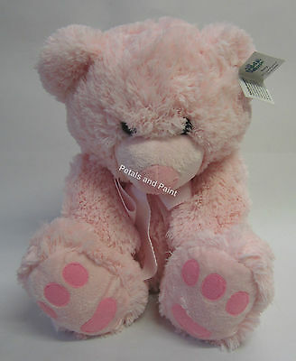 New 30cm Pink Teddy Time Bear Roly Soft & Cuddly a Great Gift for Baby Girl BNWT
