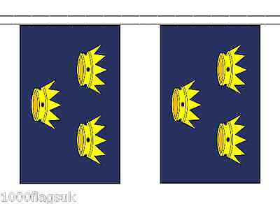 Ireland Munster Polyester Flag Bunting - 3m long with 10 Flags