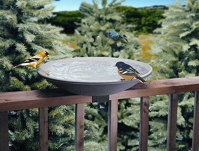 Allied Precision Birdbath 20in EZ-Tilt-To-Clean Deck Mount Bath (Model 645)
