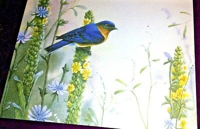 Eastern Bluebird perched on Yellow Flower-C. McClung-Blank Greeting Card -2001