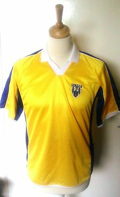 County Clare (Ireland) GAA Hurling Jersey (Adult Small)