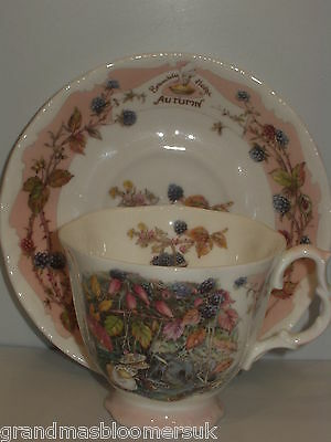 BRAMBLY HEDGE ROYAL DOULTON AUTUMN CUP & SAUCER SEASONS 1ST Quality