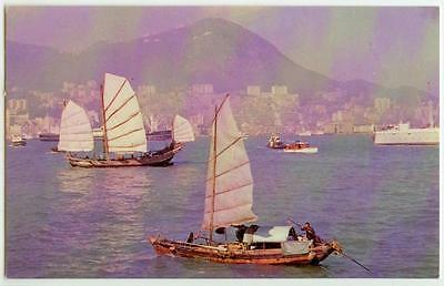 c1950s Hong Kong China View of the Harbor - In Flight with TWA card