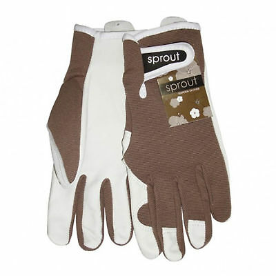 Annabel Trends Sprout Taupe Ladies Goatskin Gloves | Garden House *free Delivery