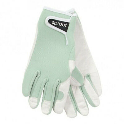 Annabel Trends Sprout Navy Ladies Goatskin Gloves | Garden House *free Delivery*