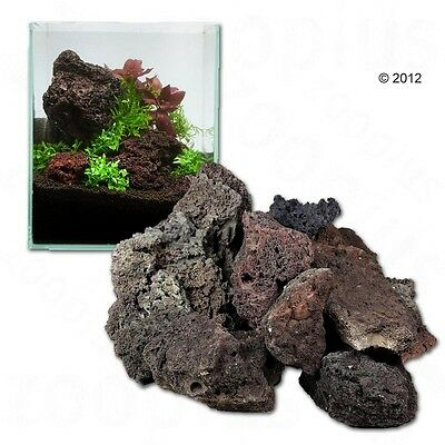 New Natural Shaped Icelandic Lava Rock Aquarium Plants Decoration 100cm Set 6kg