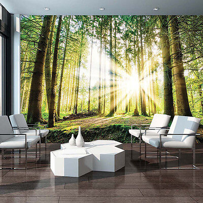 poster tapeten fototapete wandbild tapeten wald natur baum sonnen 10513 p8 eur 24 90 picclick de. Black Bedroom Furniture Sets. Home Design Ideas
