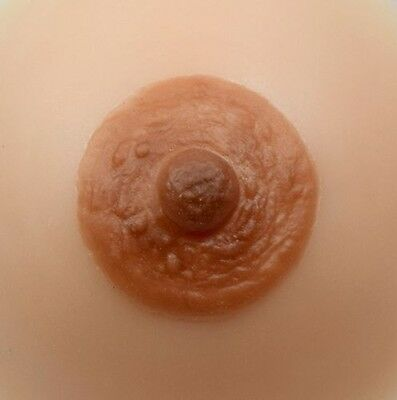 Divine Collection Silicone Reusable Very Realistic Nipples Set of 2 Many Sizes