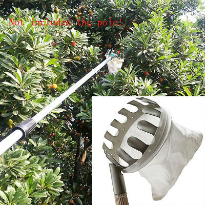 Metal Fruit Picker Picking Apple Pear Orange Tree Gardening Grab Basket