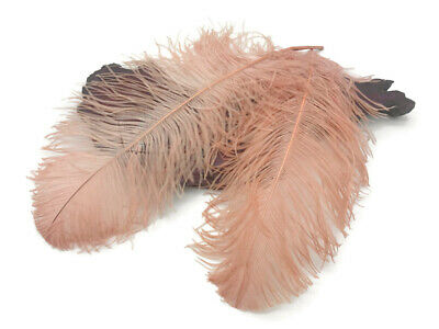 """10 Wing 18- 24"""" Champagne Huge Ostrich Plumes Centerpiece Feathers Centerpiece"""