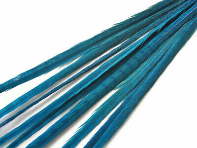 """10 pcs 20-22"""" Turquoise Blue Bleached Dyed Long Ringneck Pheasant Tail feathers"""