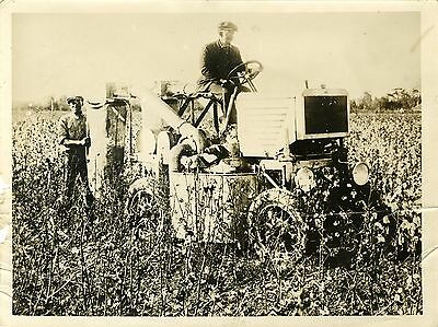 """MACHINE à RECOLTER le COTON aux U.S.A. 1931"" Photo originale WIDE WORLD PHOTOS"