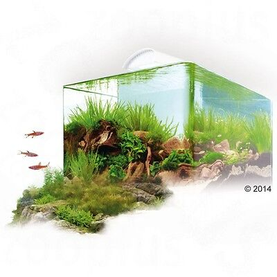 Energy Saver Balance Plant Light Dennerle Scapers Tank Complete 50l 45x36x31cm