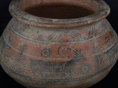 Ancient Huge Size Teracotta Painted Pot With Animals Indus Valley 2500 BC #PT154