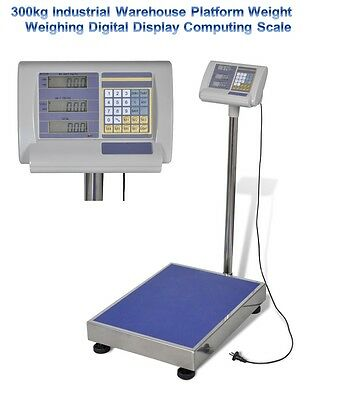 300kg Industrial Warehouse Platform Weight Weighing Price Digital Display Scale