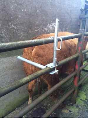 Cattle Anti Backing Bar cattle new cattle shoot, tool farm safety