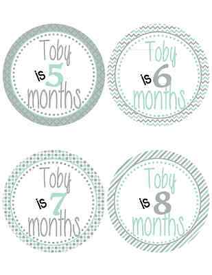 Personalized Mint & Gray Patterned Baby Milestone Stickers (492)