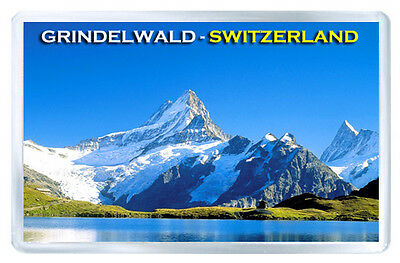 Grindelwald Switzerland Mod2 Fridge Magnet Souvenir Iman Nevera