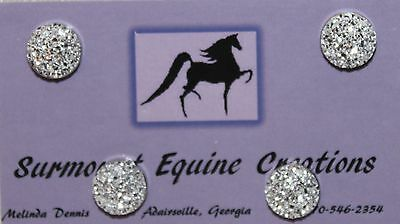 Horse Show Number Magnets - Silver AB Resin - Saddleseat, Hunt Seat, Western
