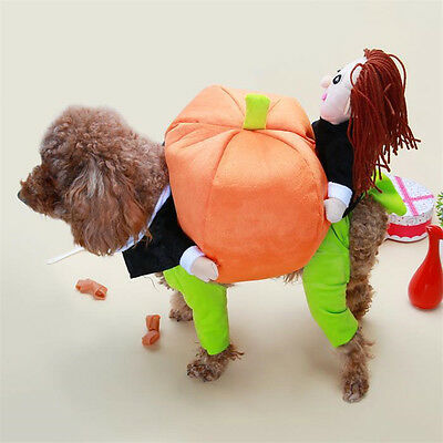 Puppy Dog Animaux Costumes Halloween Pumpkin sur le dos Vêtements Cosplay