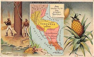 Central America Map View Pine Apples Ariosa Coffee Ad Antique Trade Card J57647