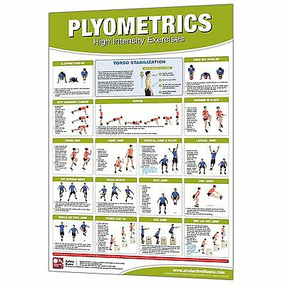 Productive Fitness Plyometrics Poster Laminated Home Gym Workout Area Equipment