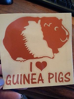 Ginger- I Love Guinea Pigs Car Sticker I Heart Guinea Pigs - Free Shipping