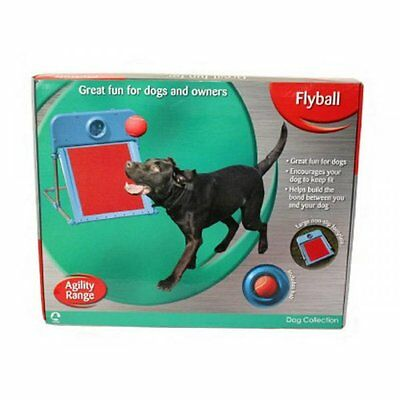 Rosewood Agility Range Flyball, Brilliant Flyball Equipment For Dogs