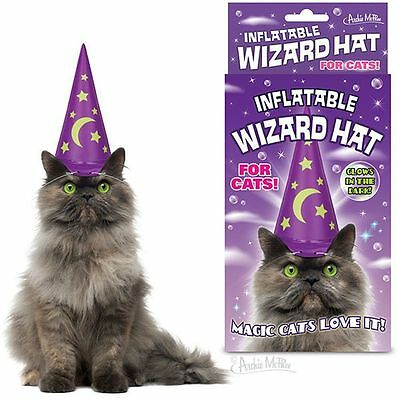 Inflatable Wizard Hat For Cats Glow in the Dark