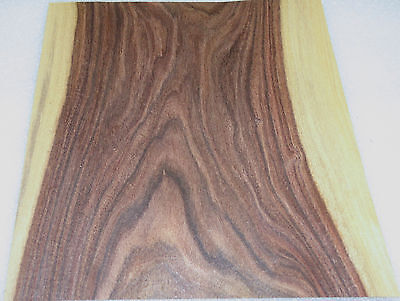 "Rosewood South American Santos wood veneer 10"" x 10"" raw no backing 1/42"" thick"