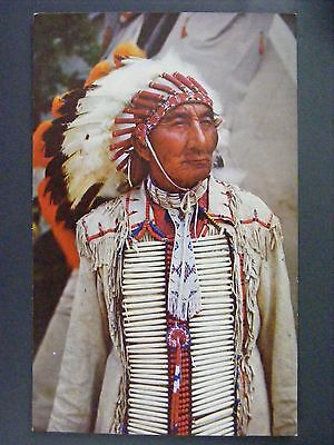 Indian Chief Knife In Full Dress Color Chrome Postcard 1950s Vintage