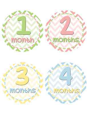 Infant Monthly Milestone Stickers - Chevron Baby Belly Stickers (296)