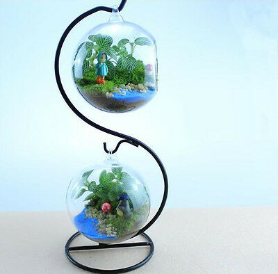 Iron Hanging Plant Glass Vase Terrarium Stand Holder