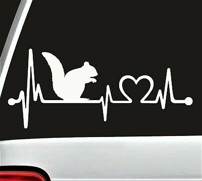 K1113 Squirrel Heartbeat Monitor Decal Sticker Car Truck SUV Laptop Surface