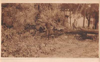 Lumberjack Logging Scene Tree Cutting Real Photo Antique Postcard K44257