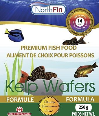 NORTHFIN KELP WAFERS 14 mm 250g Herbivore Omnivore Fish Food Bottom feeders • EUR 18,55