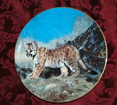 Wild CAT - ready for adventure Hamilton Collector PLATE P31 yy