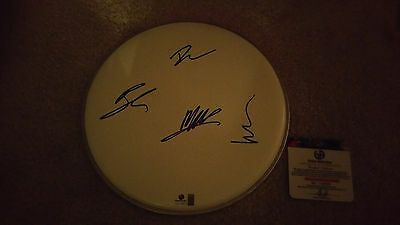 Mumford and sons band signed autograph drumhead GA Marcus